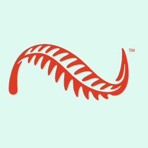 New Zealand Natural Logo